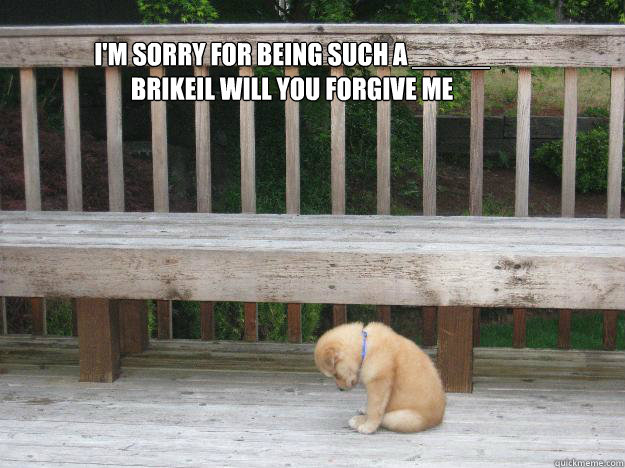 I'm sorry for being such a _____ BRIKEIL WILL YOU FORGIVE ME   - I'm sorry for being such a _____ BRIKEIL WILL YOU FORGIVE ME    Sorry