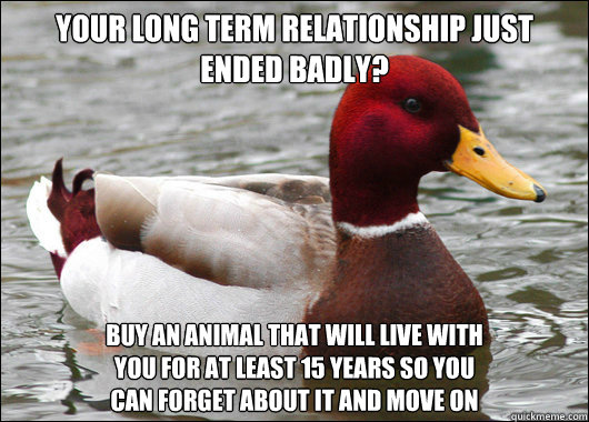 how to move on from a long term relationship