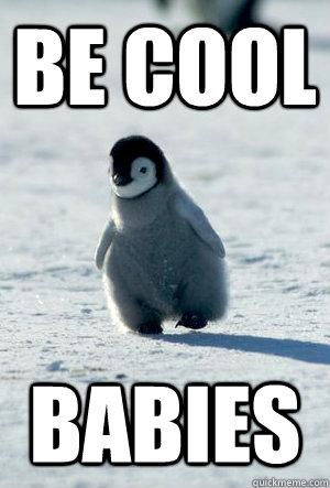 07e8599e81ce2619e9a0034f65885eb25511bc058bc74d9941465e2133f91eb8 be cool baby penguin memes quickmeme,Cute Penguin Meme