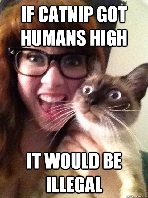 If Catnip got humans high It would be illegal