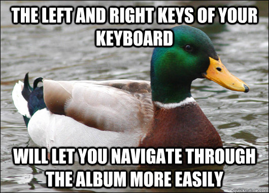 the left and right keys of your keyboard will let you navigate through the album more easily - the left and right keys of your keyboard will let you navigate through the album more easily  Actual Advice Mallard