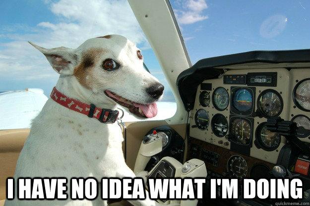 I have no idea what I'm Doing -  I have no idea what I'm Doing  Co-Pilot Dog