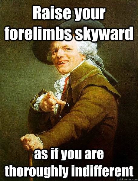 Raise your forelimbs skyward  as if you are thoroughly indifferent