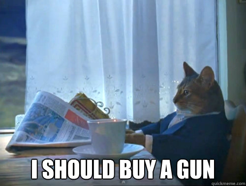 I should buy a gun -  I should buy a gun  The One Percent Cat
