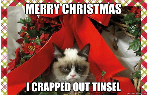 merry christmas I crapped out tinsel