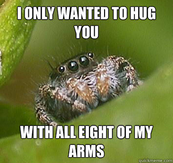 I only wanted to hug you with all eight of my arms  Misunderstood Spider