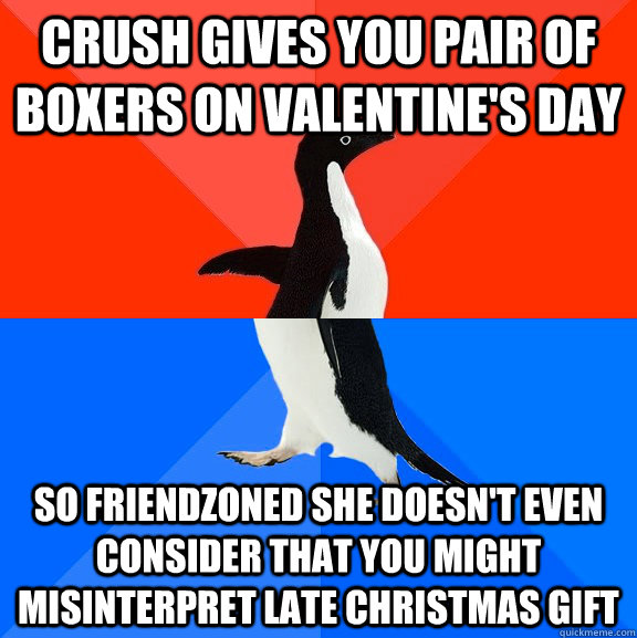crush gives you pair of boxers on valentine's day so friendzoned she doesn't even consider that you might misinterpret late christmas gift - crush gives you pair of boxers on valentine's day so friendzoned she doesn't even consider that you might misinterpret late christmas gift  Socially Awesome Awkward Penguin