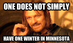 One does not simply have one Winter in Minnesota
