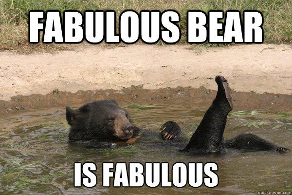 Fabulous bear is fabulous