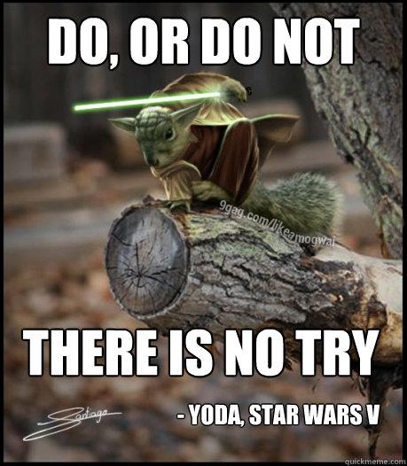0882ec3440b74db231ea89211ed10f724c94479a81f5b927256e63cc79de8483 do, or do not there is no try yoda, star wars v yoda squirrel