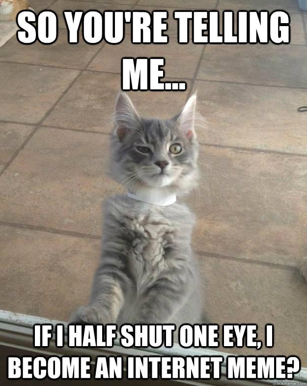 so you're telling me... if i half shut one eye, I become an internet meme?