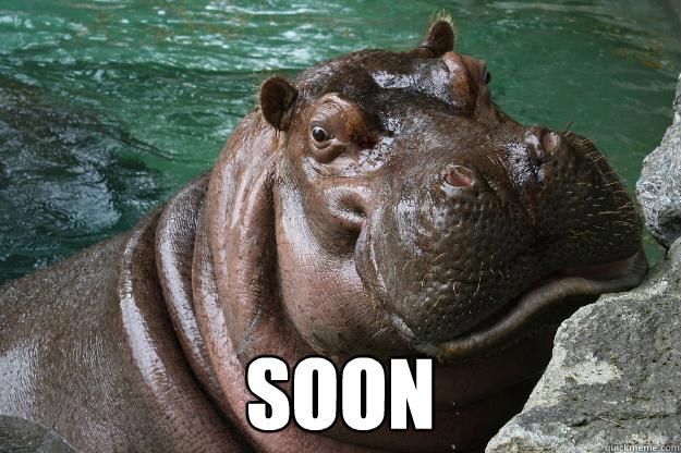 soon  Hungry Hippo