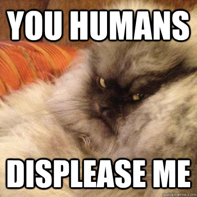 You Humans Displease me