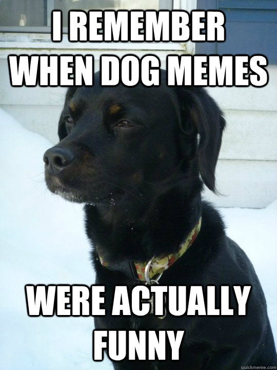 I remember when dog memes were actually funny  Philosophical Puppy