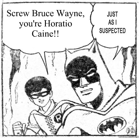 Screw Bruce Wayne, you're Horatio Caine!! - Screw Bruce Wayne, you're Horatio Caine!!  Misc