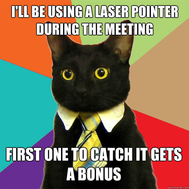 I'll be using a laser pointer during the meeting First one to catch it gets a bonus  Business Cat