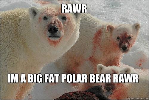 RAWR  IM A BIG FAT POLAR BEAR RAWR