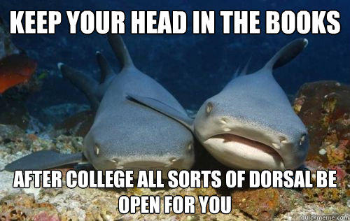 keep your head in the books after college all sorts of dorsal be open for you  Compassionate Shark Friend