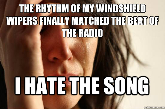 The rhythm of my windshield wipers finally matched the beat of the radio I hate the song - The rhythm of my windshield wipers finally matched the beat of the radio I hate the song  First World Problems