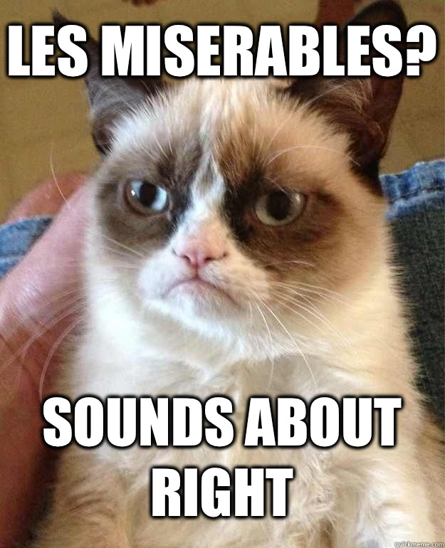 Les Miserables? Sounds about right - Les Miserables? Sounds about right  Grumpy Cat