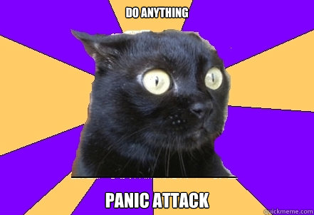 Do anything panic attack  Anxiety Cat