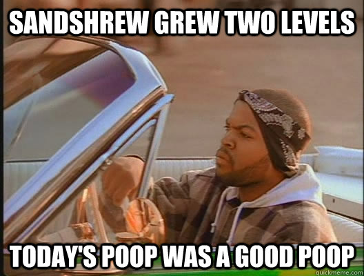 sandshrew grew two levels Today's poop was a good poop - sandshrew grew two levels Today's poop was a good poop  today was a good day