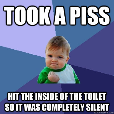 Took a piss hit the inside of the toilet so it was completely silent - Took a piss hit the inside of the toilet so it was completely silent  Success Kid