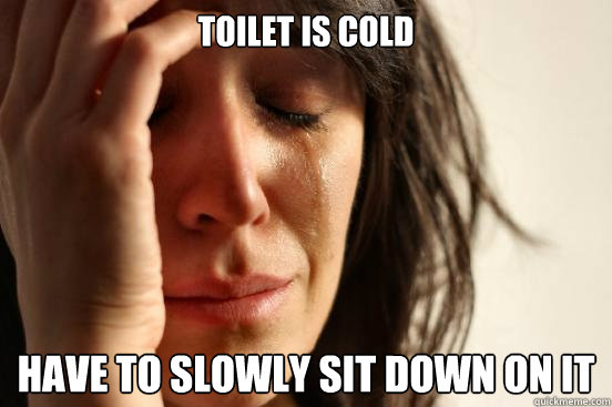 Toilet is cold Have to slowly sit down on it - Toilet is cold Have to slowly sit down on it  First World Problems