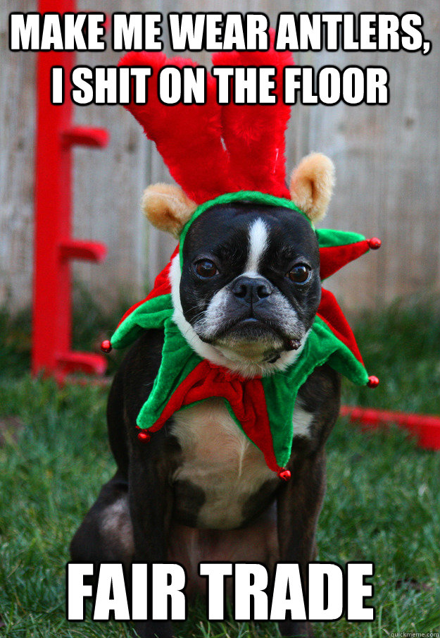 Make me wear antlers, I shit on the floor fair trade  grumpy holiday dog