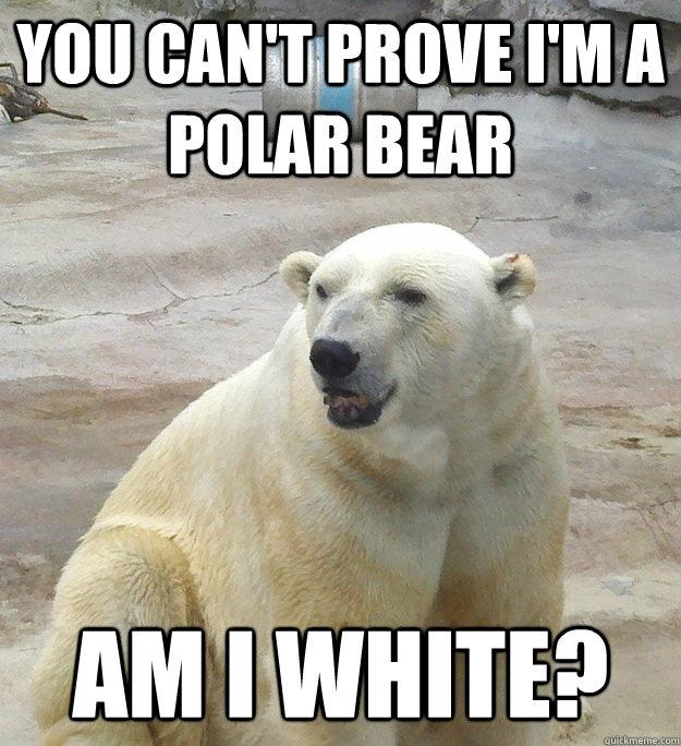 You can't prove I'm a Polar Bear Am I white? - You can't prove I'm a Polar Bear Am I white?  Bad Pun Polar Bear