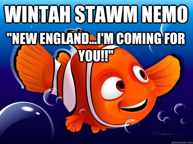 wintah stawm nemo