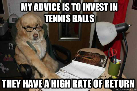 My advice is to invest in tennis balls They have a high rate of return  Financial Advice Dog