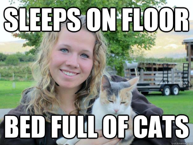 sleeps on floor bed full of cats