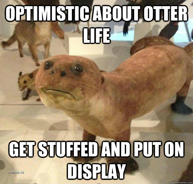 Optimistic about otter life get stuffed and put on display  betrayed otter