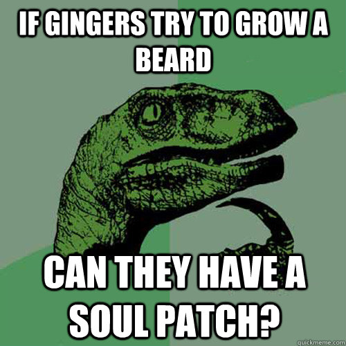 If gingers try to grow a beard can they have a soul patch? - If gingers try to grow a beard can they have a soul patch?  Philosoraptor