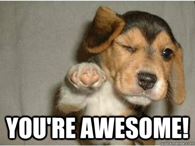 you're awesome! -  you're awesome!  Misc
