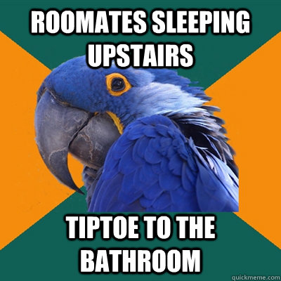 Roomates sleeping upstairs Tiptoe to the bathroom - Roomates sleeping upstairs Tiptoe to the bathroom  Paranoid Parrot