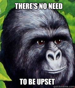 There's no Need To be upset  gorilla munch