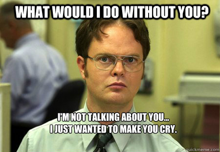 What would I do without you? I'm not talking about you...  I just wanted to make you cry.  Schrute