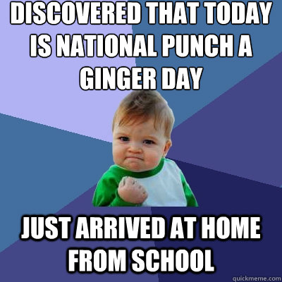 Discovered that today is National Punch a Ginger Day Just arrived at home from school - Discovered that today is National Punch a Ginger Day Just arrived at home from school  Success Kid