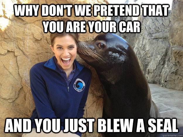 Why don't we pretend that you are your car and you just blew a seal - Why don't we pretend that you are your car and you just blew a seal  Crazy Secret