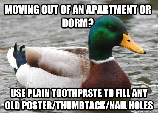 Moving out of an apartment or dorm? Use plain toothpaste to fill any old poster/thumbtack/nail holes - Moving out of an apartment or dorm? Use plain toothpaste to fill any old poster/thumbtack/nail holes  Actual Advice Mallard