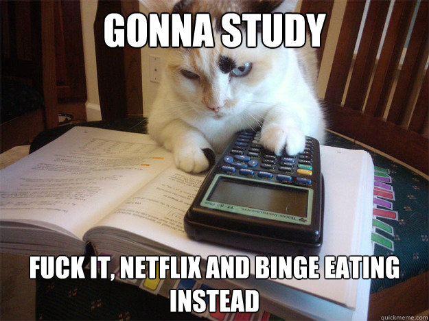 gonna study Fuck it, Netflix and binge eating instead - gonna study Fuck it, Netflix and binge eating instead  Misc