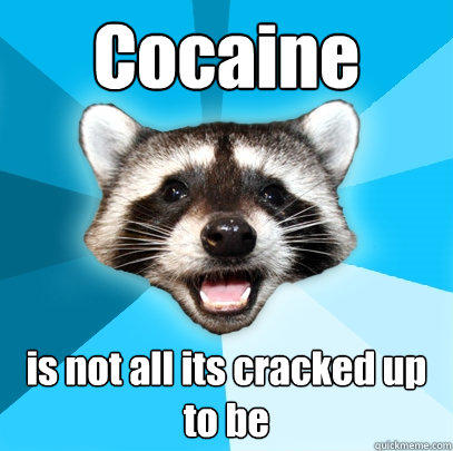 Cocaine is not all its cracked up to be - Cocaine is not all its cracked up to be  Lame Pun Coon
