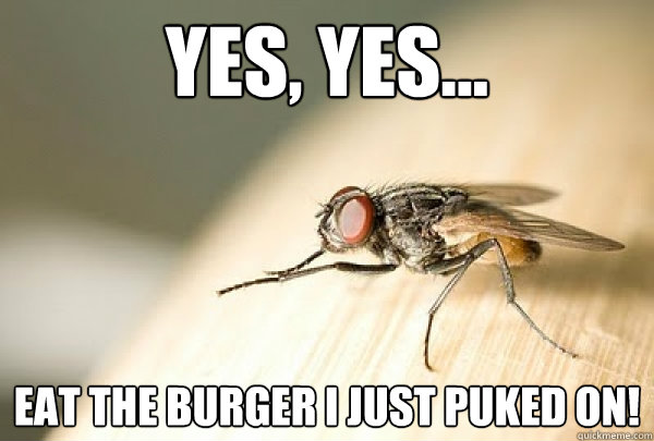 yes, yes... eat the burger i just puked on!