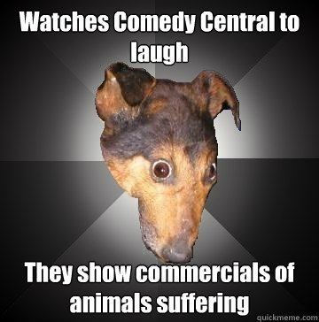 Watches Comedy Central to laugh They show commercials of animals suffering  Depression Dog