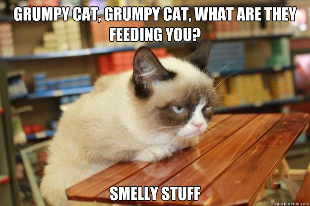 grumpy cat, grumpy cat, what are they feeding you? Smelly stuff