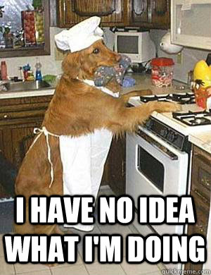 I have no idea what I'm doing  Cooking Dog