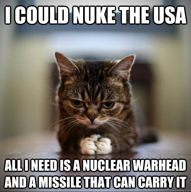 I could nuke the usa All I need is a nuclear warhead and a missile that can carry it