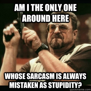 Am i the only one around here whose sarcasm is always mistaken as stupidity? - Am i the only one around here whose sarcasm is always mistaken as stupidity?  Am I The Only One Round Here